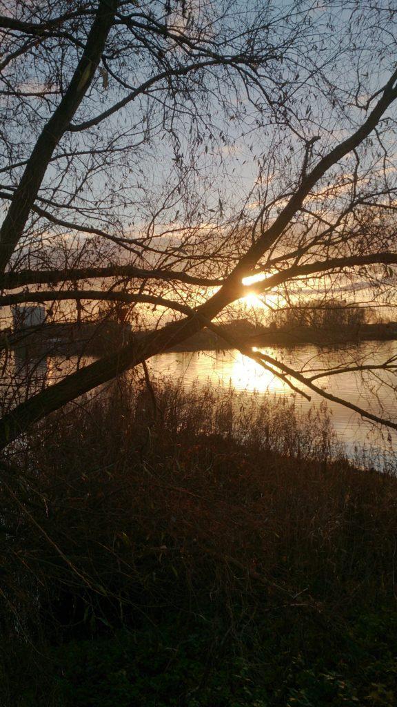 natuur gedichten uit nederland