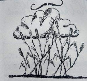 wolken en wind wadden gedichten